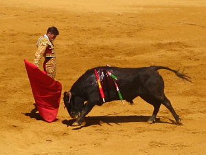 567913_68355938_bullfighter_stock_xchng_royalty_free_300