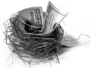 252256_6625_nest_egg_stock_xchng_royalty_free_300