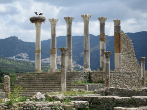 1328860_67443166_volubilis_ruins_stock_xchng_royalty_free_300