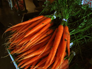 770432_49641869_carrots_stock_xchng_royalty_free_300