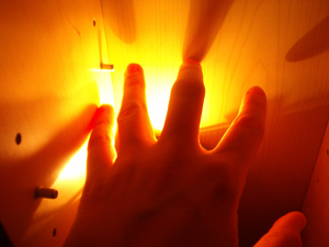 107913_3204_reaching_for_the_light_stock_xchng_royalty_free_300