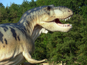 622792_88155825_dinosaur4_stock_xchng_royalty_free_300