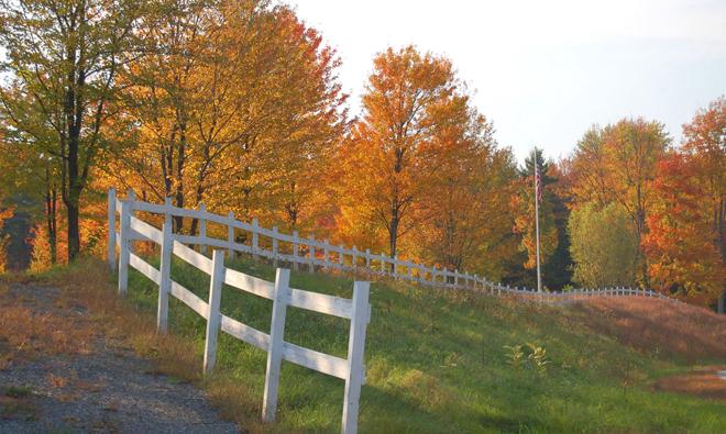 fence-1388285-660x395