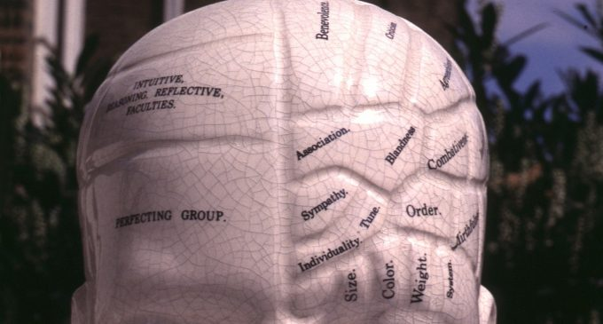 """Is """"Active Share"""" the New Phrenology?"""