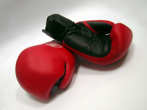 279226_8723_boxing_gloves_stock_xchng_royalty_free_300