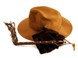 Hat glove whip