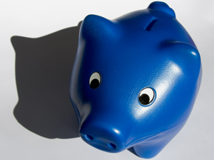 994448_53508805_piggy_bank_stock_xchng_royalty_free_300